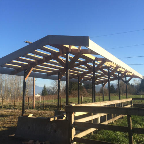 Outbuilding construction